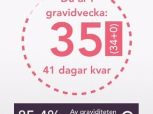 gravid vecka 35