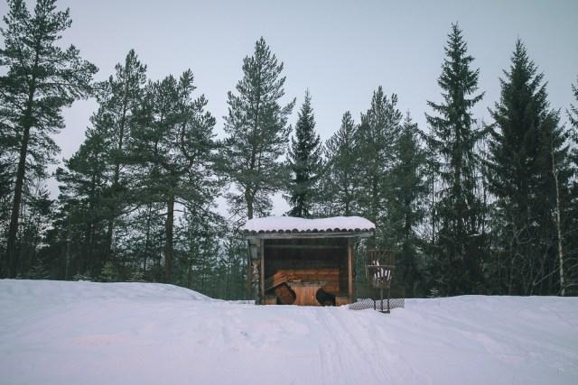 Pulkabacke i Sälen