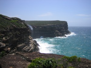 The Royal National Park