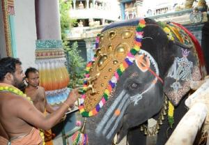 Sri Narayani Amma
