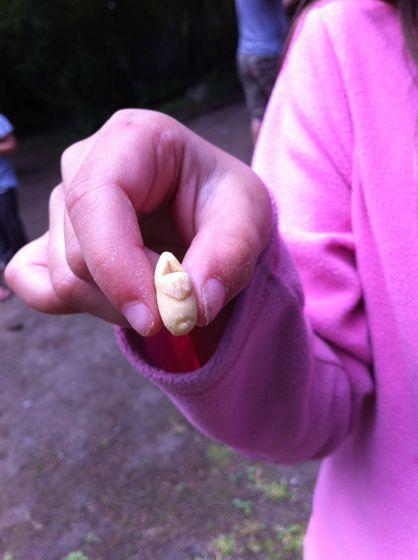clog-looking peanut