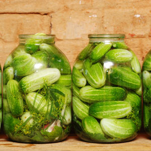 Homemade Pickles Cucumber