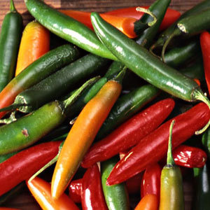 Serrano Hot Pepper