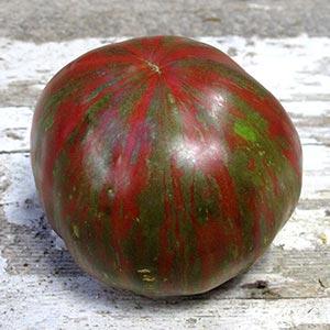 Pink Berkeley Tie Dye Tomato