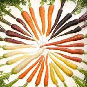 Over the Rainbow Carrot Mix