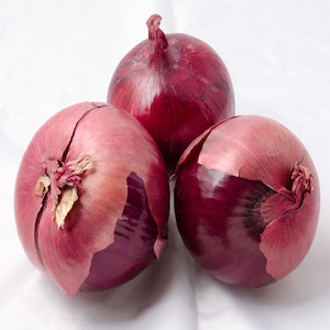 Red Mountain Onion