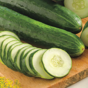 Sweet Success Cucumber