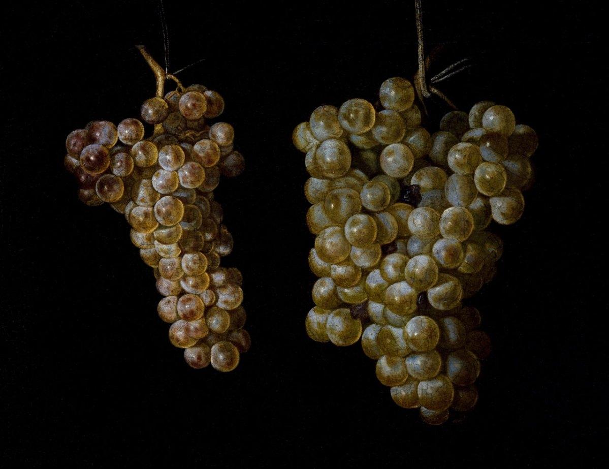 Hoe smaakt een wijn uit de Bourgogne?