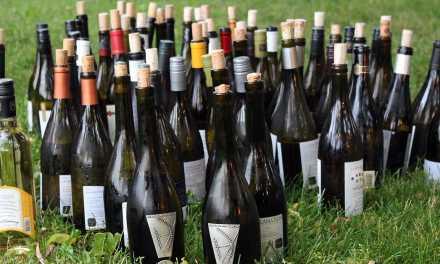 Wijnproeverij: een kijkje in de praktijk