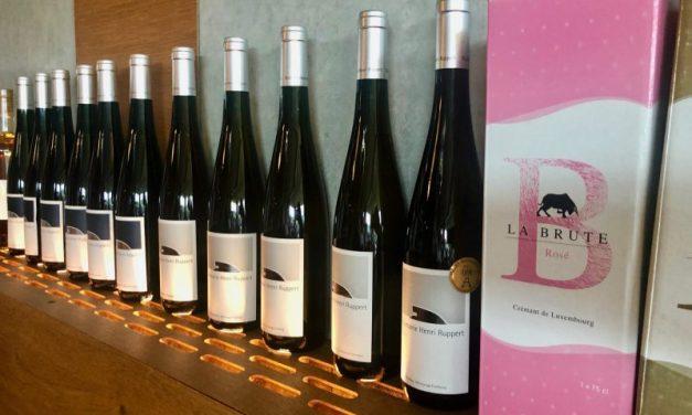 Luxemburgse wijnen, ken jij ze al?