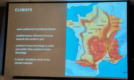 Crozes Hermitage, masterclass over Rhône wijnen