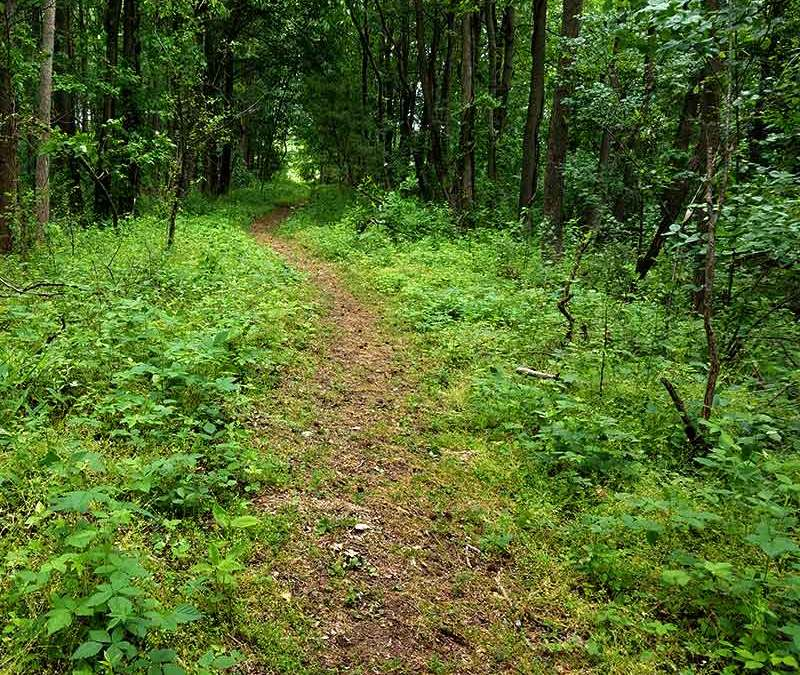 Tranquility Trail in Woolwich Township, New Jersey