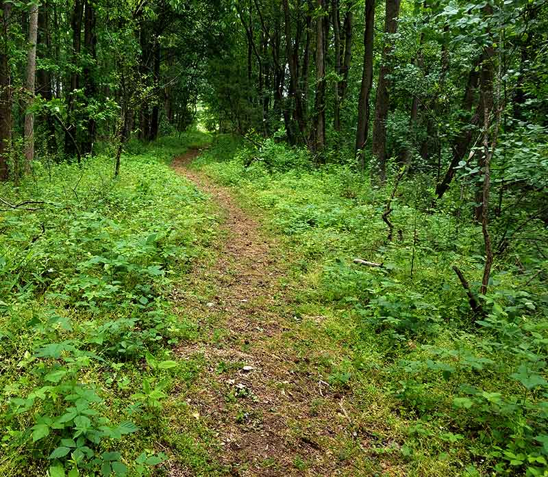 Tranquility Trail - Woolwich Township New Jersey