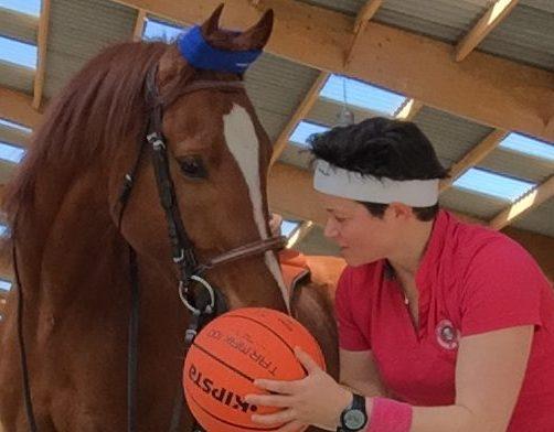 condition physique cheval amélioration cardio