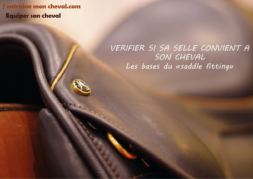 saddle fitting selle convient cheval