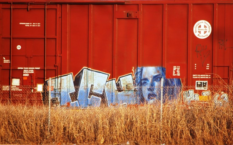 Womans Face On A Train