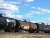 Brown trains