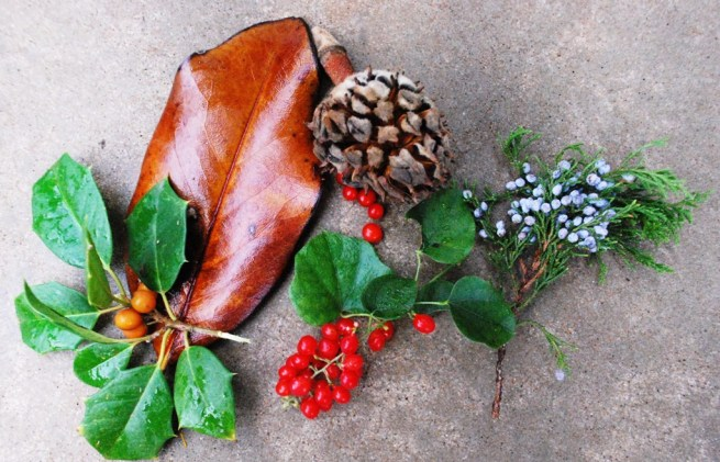 Autumns Colors in Nature