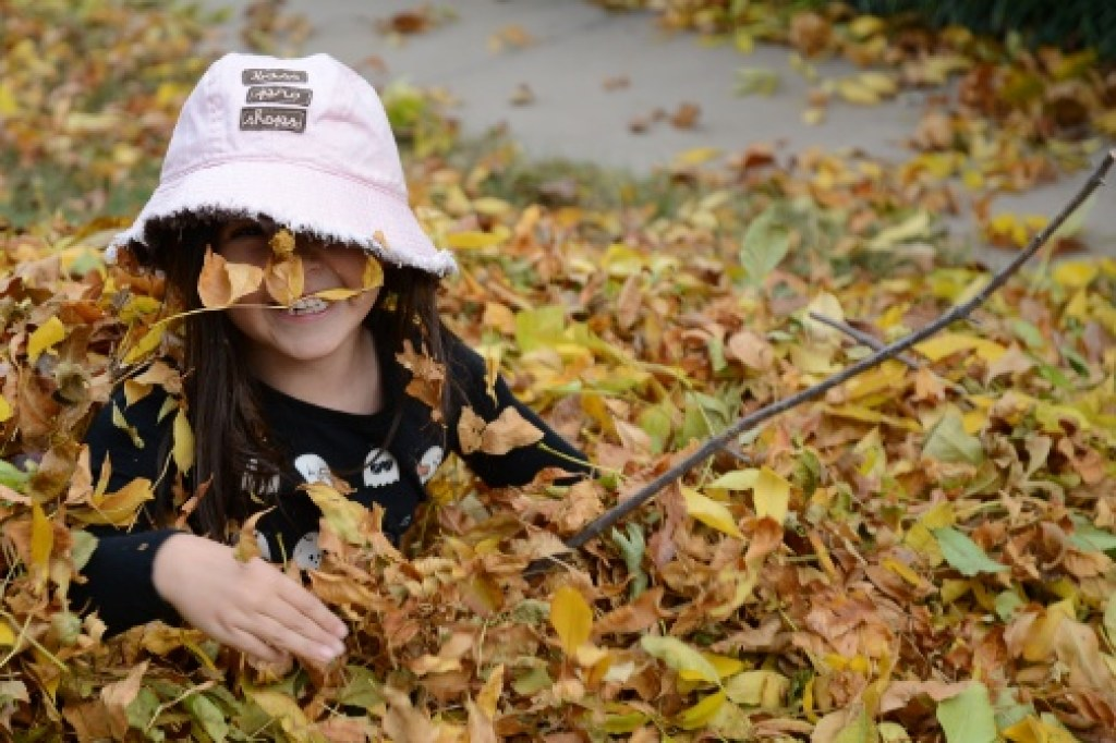 Playing in a Pile of Leaves
