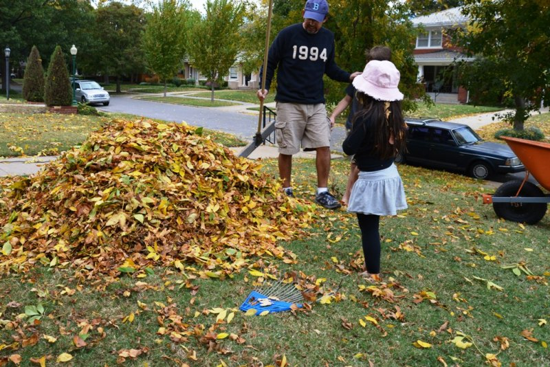 How To Make  A Leaf Pile