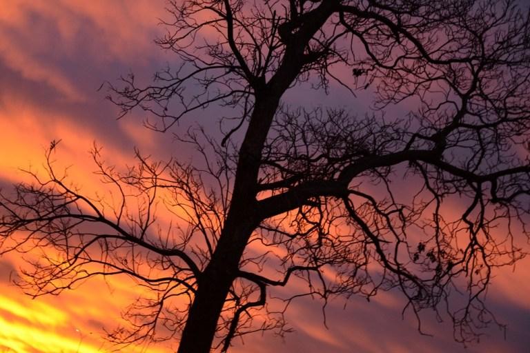 Oklahoma and Autumn Sunrise   November 24, 2013
