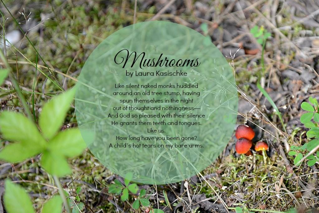 Mushrooms Poem