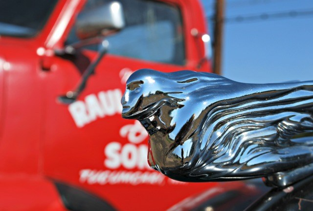 Route 66 Gas Station with restored cars and hood ornaments