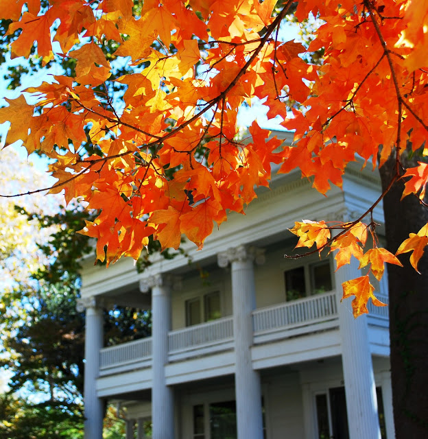 Fall Foliage in OKC's Heritage Hills