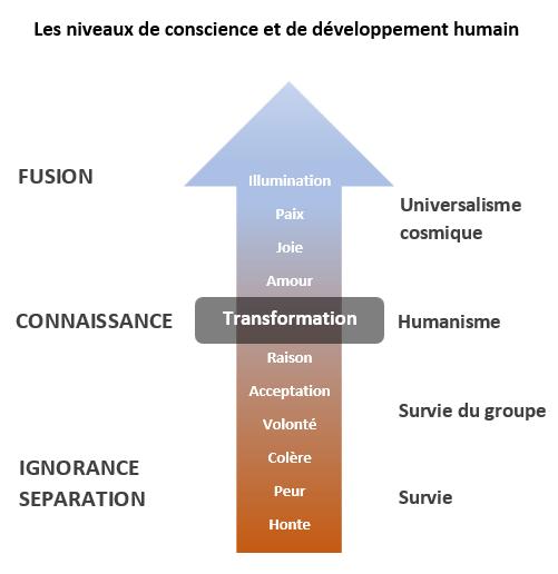 niveaux de conscience et de développement humain