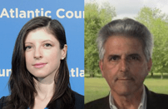 Alina Polyakova (Atlantic Council) & Neil Fligstein (University of California, Berkeley)