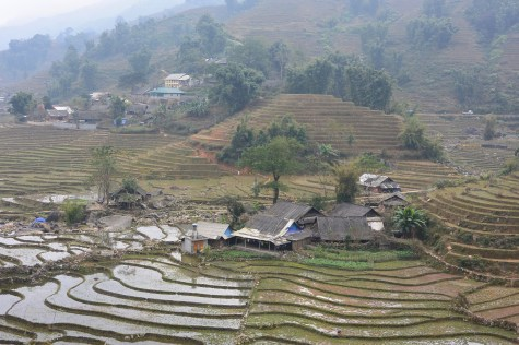 Houses in the rice fields of Sapa