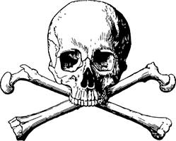 The Skull and Bones Society