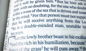 double minded man bible verses scriptures