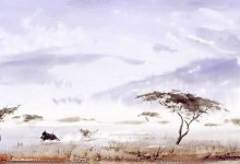 Paintings of Africa