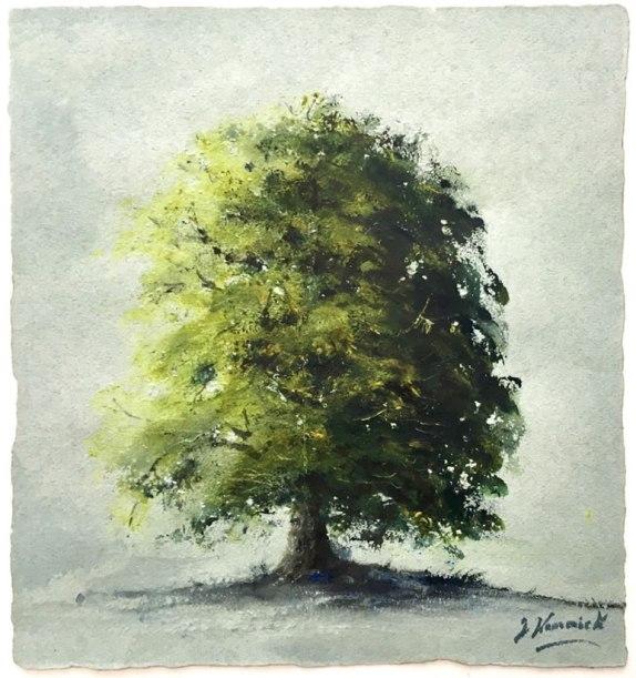 "tree study £540 6""x 7"""