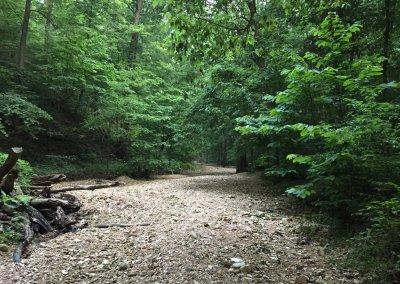 Lewis & Clark Trails