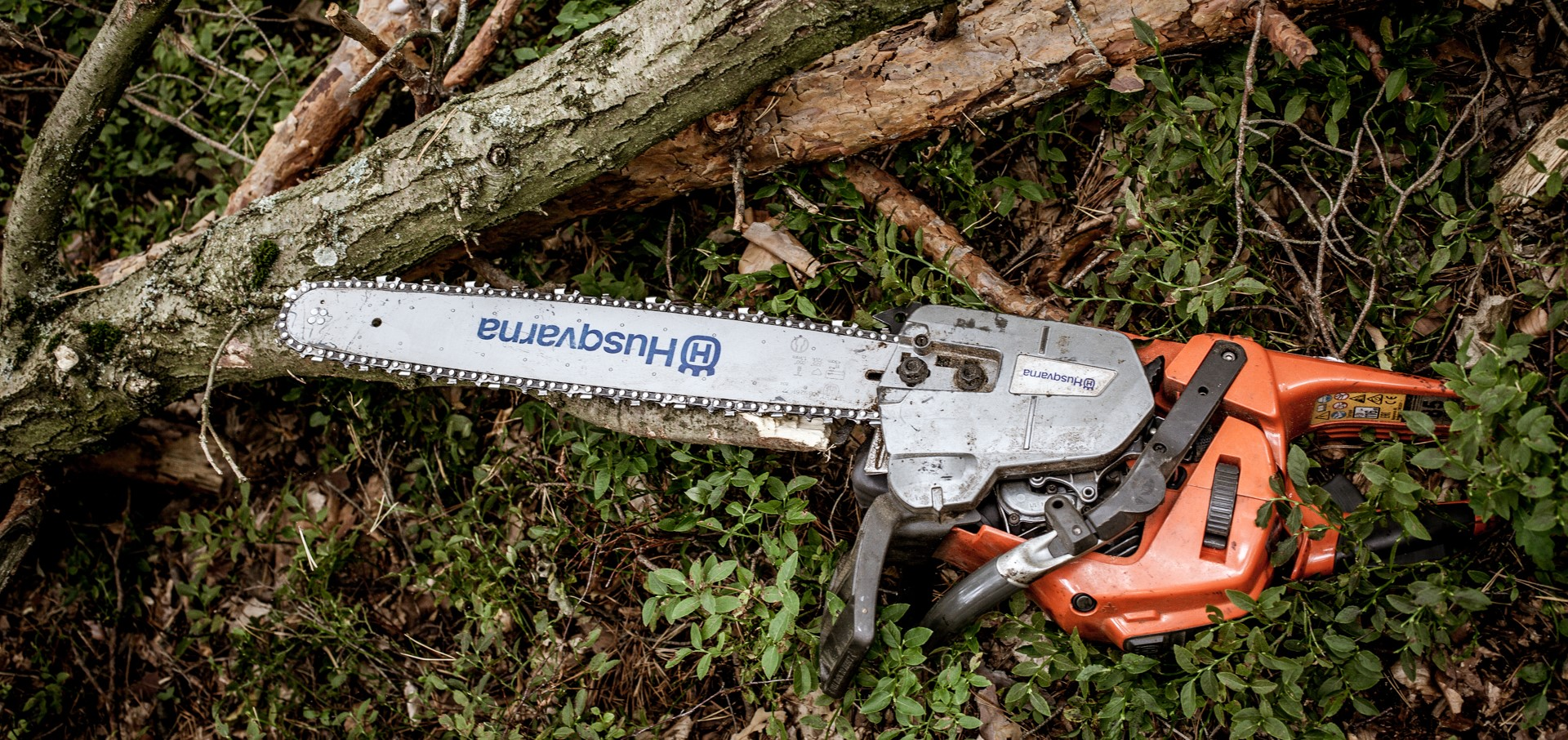Applying Lessons from a Chainsaw to Your Law Practice