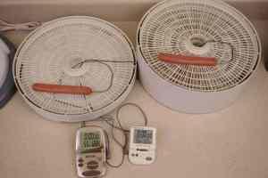 Nesco Dehydrator Heat Test