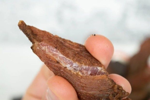 Mole turkey jerky finished with white fibers showing when bent