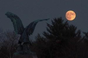 Eagle-moon-2
