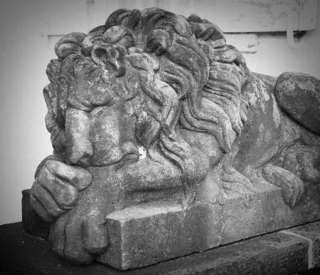 Clermont Lion