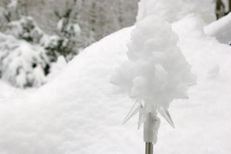 Snow, Anyone?
