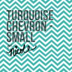 Small Turquoise Chevron