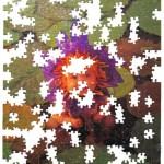 Found - aka Puzzle (2003)