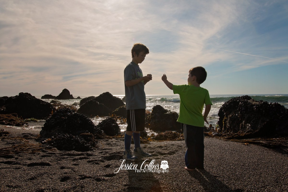 Child Photographer in Santa Rosa Ca, Sonoma County Photography