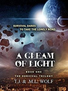 A Gleam of Light - A Book Review
