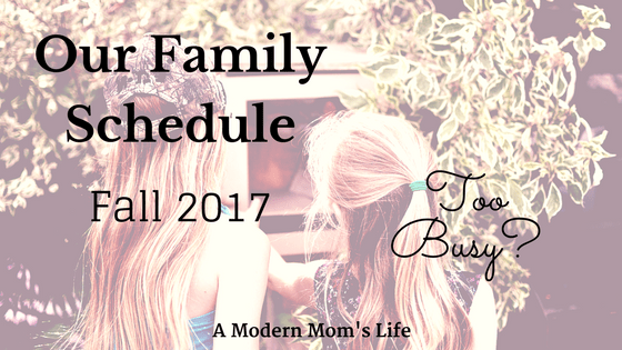 Our Family Schedule 2017 - Too Busy?