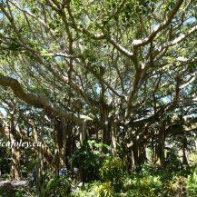 Cypress Gardens LEGOland Florida