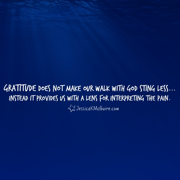 gratitude does not make our walk with god sting less it is a lense for interpretating the pain jkmcguire