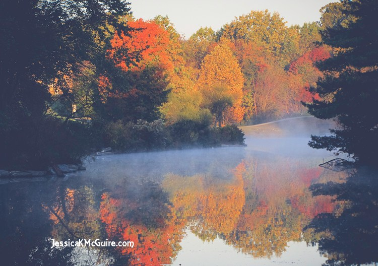 fall-water-reflection-jkmcguire